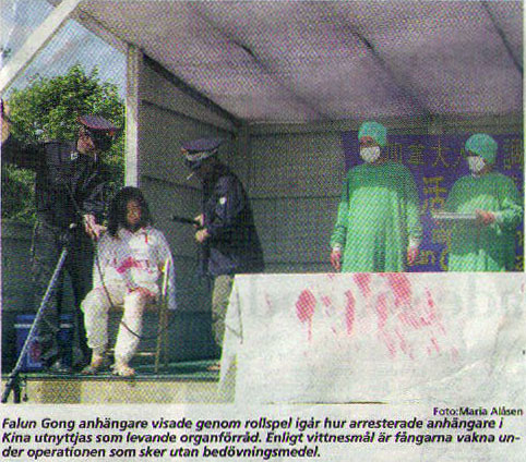 Image result for falun gong china organ harvesting pic