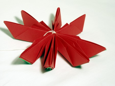 Do This By Folding The Highest Standing Paper Petals As Shown In Sixth Photo How High Is Folded Depends On Individual