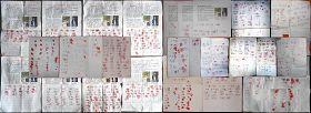 又有939人再度联名呼吁营救唐山李姗姗