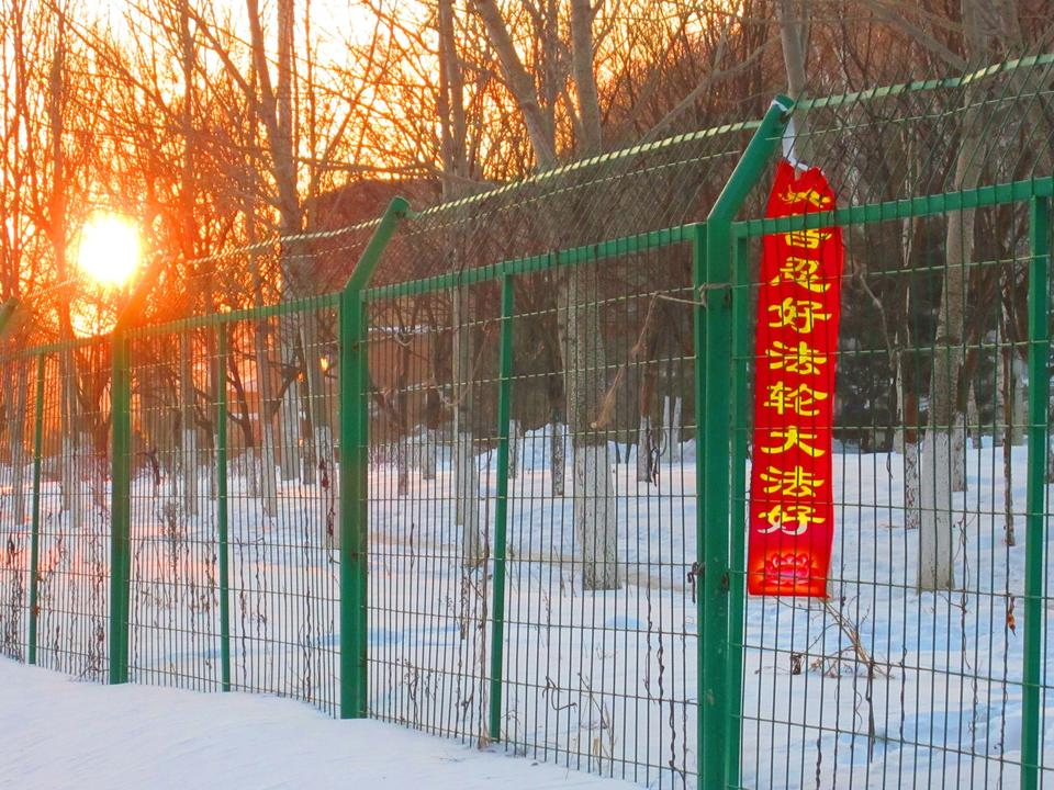 2016-2-15-minghui-banner-jixi-03.jpg