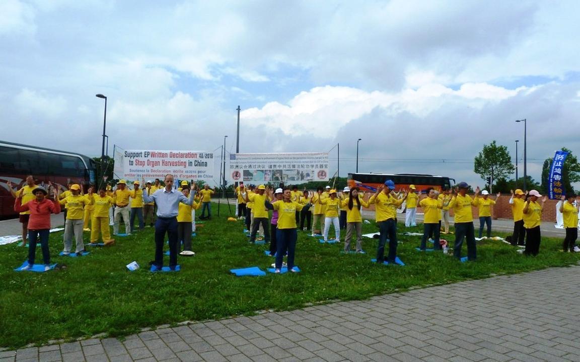 Broad Support for Falun Gong in Strasbourg   Falun Dafa - Minghui org