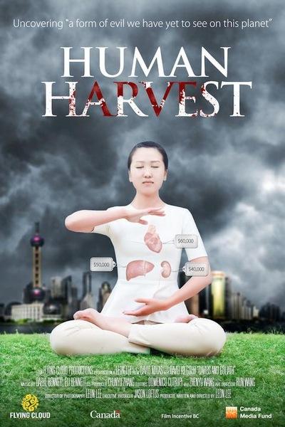 Poster: Kejahatan Pengambilan Organ Secara Hidup-Hidup