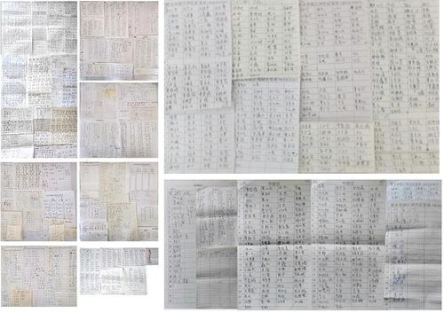 Tanda tangan dari Kota Changsha, Provinsi Hunan - Menuntut Jiang Zemin