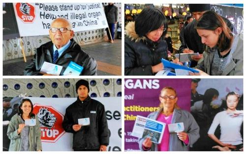 Warga Australia menandatangani kartu pos yang akan dikirim kepada Anggota Dewan mereka untuk mendesak pemerintah Australia mengambil tindakan untuk menghentikan kejahatan pengambilan organ secara paksa di Tiongkok